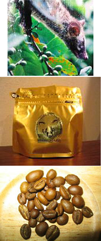 アラミドコーヒー.jpg